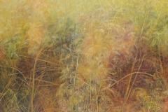 Asparagus-Harcott-1-2018-Öl-90x110-cm