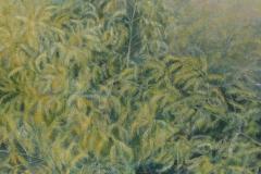 Asparagus-Harcott-3-2018-Acryl-60x60-cm